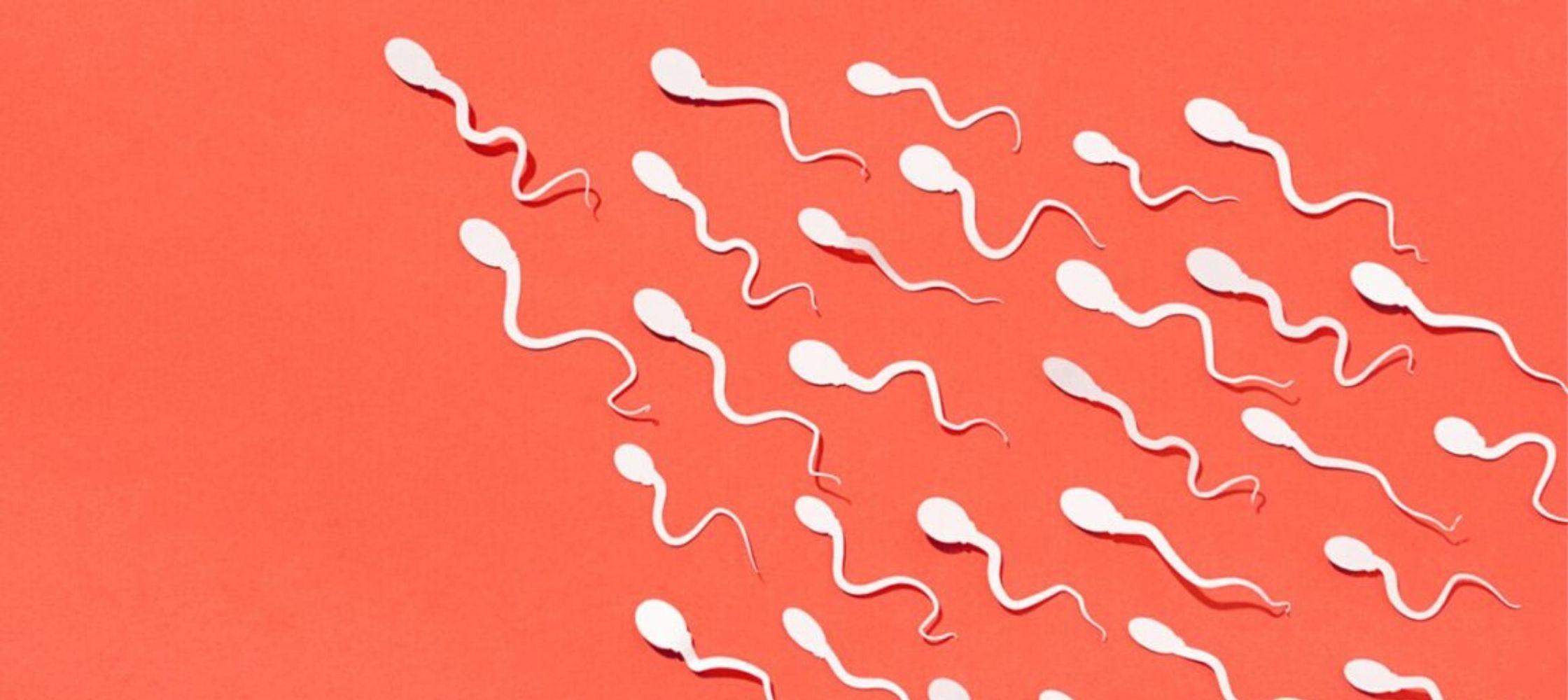 Sperma kwaliteit verbeteren