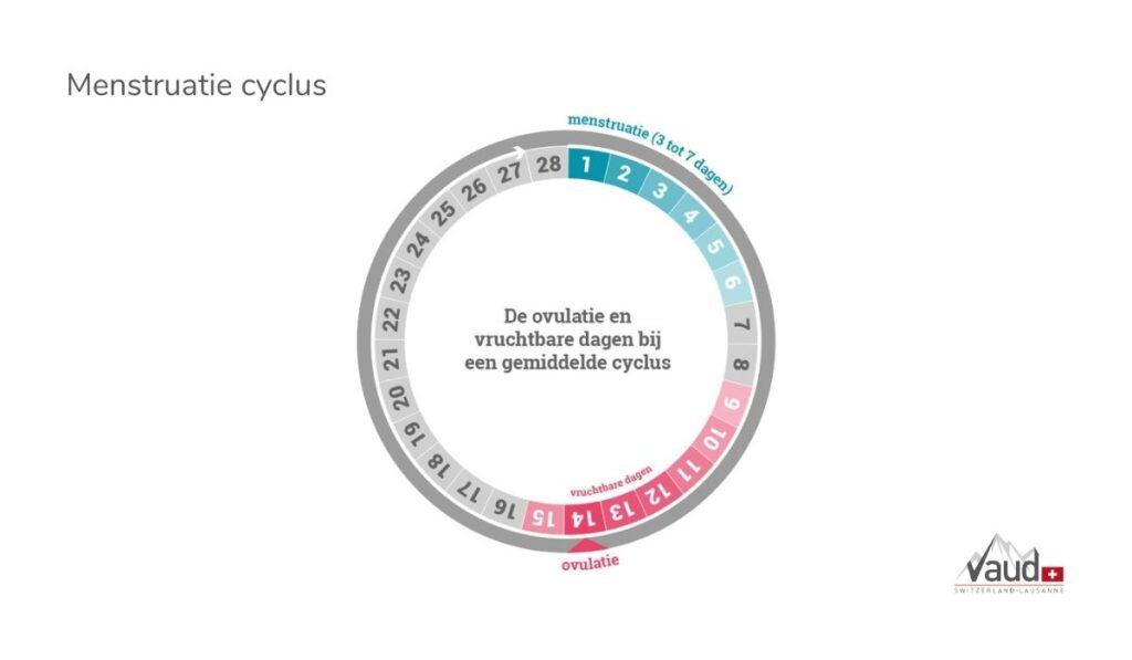 zwanger worden menstruatie cyclus