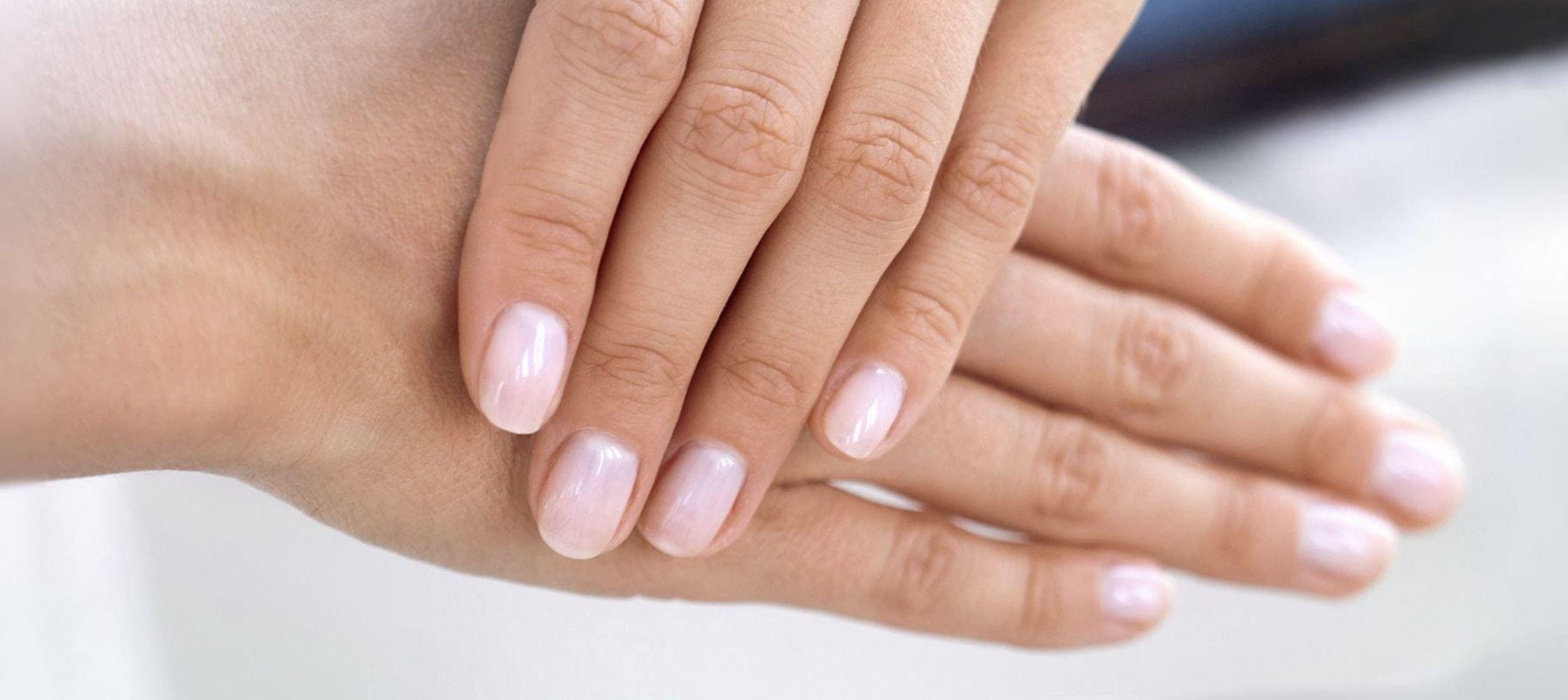 huid haar nagel