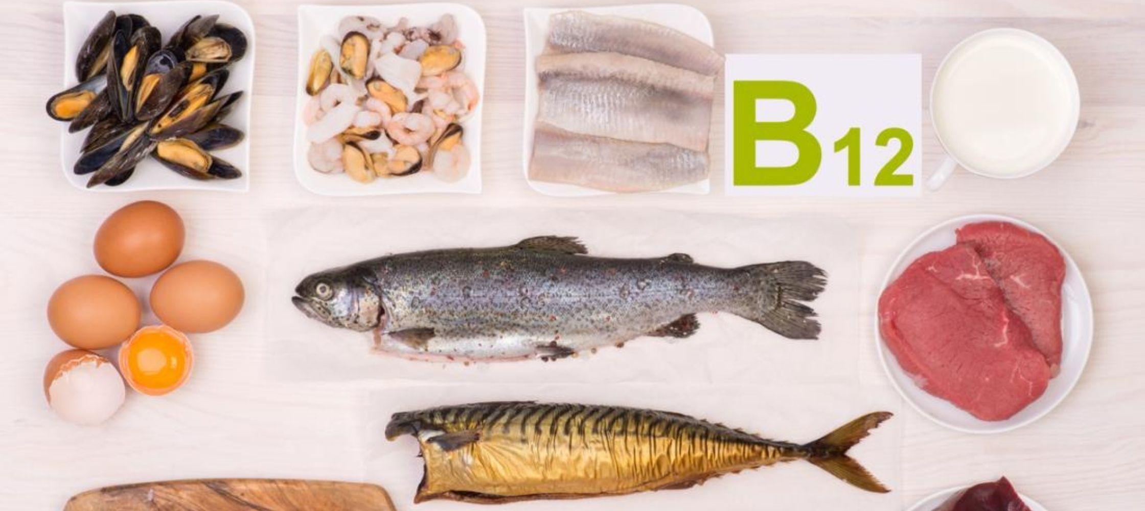 Vitamine B12 voeding